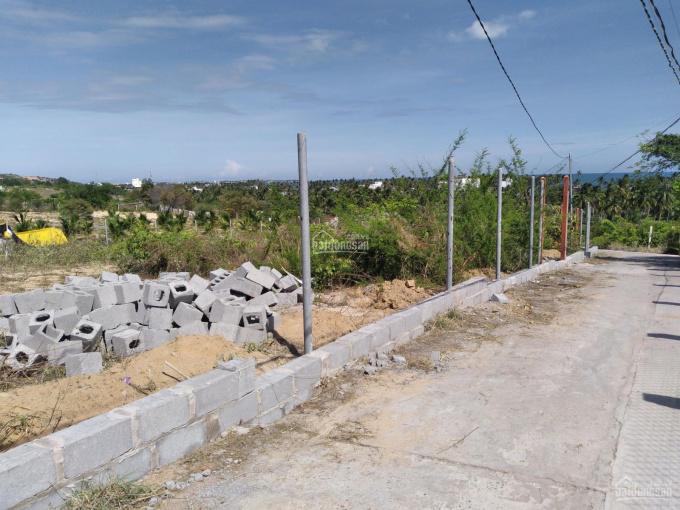 Đất đồi view biển đường Nguyễn Đình Chiểu, Hàm Tiến ảnh 0