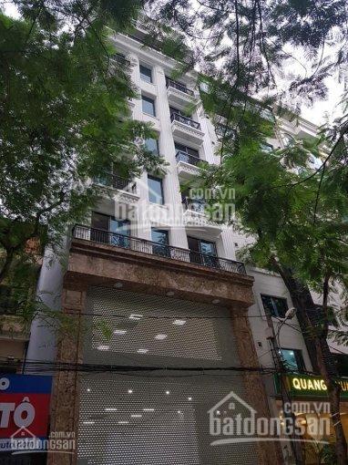 Bán tòa nhà VP mặt phố Thụy Khuê, KD 180m2, 8 tầng, MT 7.5m, cho thuê đỉnh 200 tr/th, giá 53 tỷ ảnh 0