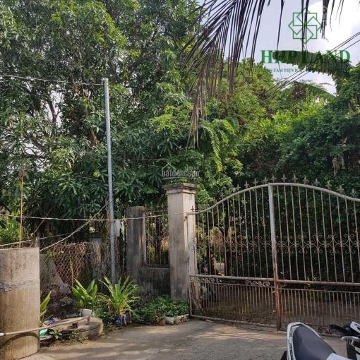 Bán đất tặng nhà cấp 4 Cù Lao, Phường Hiệp Hoà, 0949268682 ảnh 0