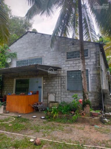 Bán đất sát biển tại Bãi Thơm, Phú Quốc giá rẻ ảnh 0