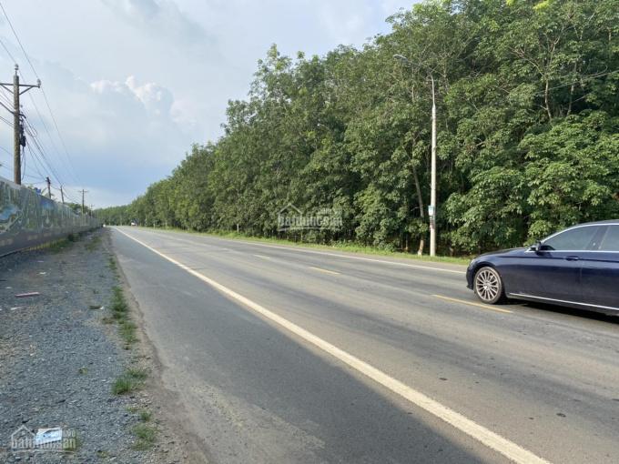 bán dự án có sổ hồng từng nền chỉ 700 tr sở hữu ngay một lô đất tuyệt đẹp đt 769 và đường cầu mên