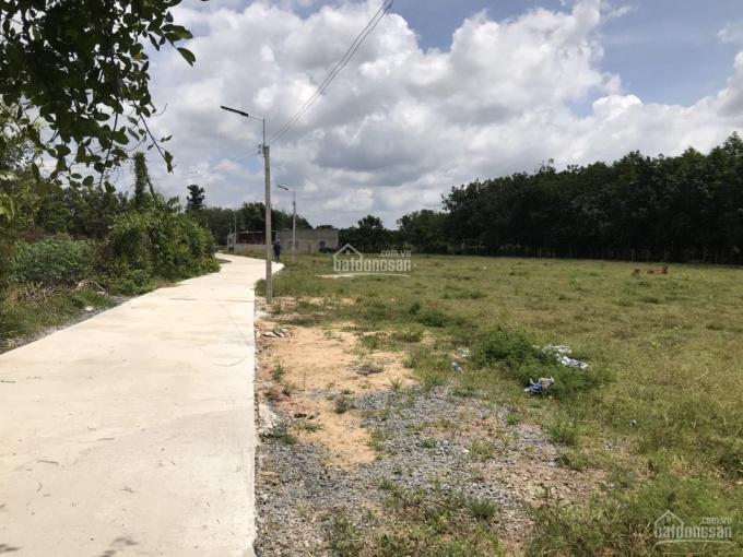 Đầu tư đất giá rẻ chỉ 300 triệu/nền tại KCN Hiệp Thạnh, huyện Gò Dầu - Tây Ninh ảnh 0