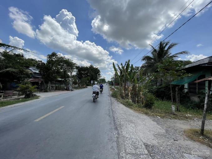 Chính chủ bán 955m2 đất thổ cư P. Mỹ An Hưng B, Huyện Lấp Vò, Tỉnh Đồng Tháp ảnh 0