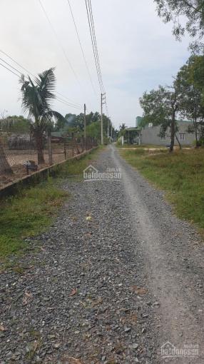 Đất vườn Vĩnh Thanh Nhơn Trạch, ngay Vành Đai 3, giá gốc cắt sổ, đường ô tô 1 tỷ/1000m2 (đất CLN) ảnh 0
