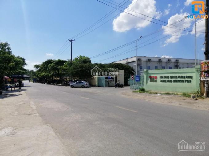 Trục chính kinh doanh sầm uất, đường rộng 8m gần KCN Bắc Thăng Long. Lh: 0388811362 ảnh 0