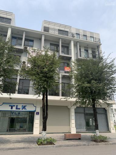 Chính chủ cho thuê nhà Nguyễn Khánh Toàn DT 90m2, 6 tầng, MT 10m, thông sàn, thang máy. Giá 45tr/th ảnh 0