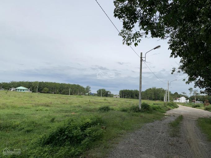 Đất ngộp ngân hàng bán rẻ 2000m2, giá 580tr/nền, dân cư đông, tiện buôn bán, SHR ảnh 0