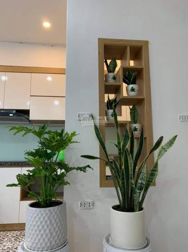 Siêu phẩm Nghi Tàm - Nhà mới kính koong - Cần bán gấp - Cách mặt phố Nghi Tàm 60m ảnh 0