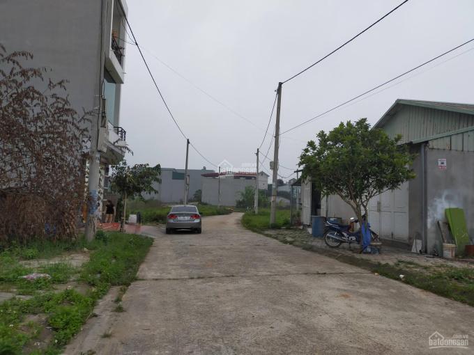 Bán đất khu 14 phường Thanh Miếu, thành phố Việt Trì, Phú Thọ. Lh. 0981.885.882 ảnh 0