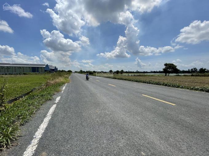 Bán gấp trong tháng 7/2021 lô đất ĐT852B, Xã Bình Thạnh Trung, huyện Lấp Vò, tỉnh Đồng Tháp ảnh 0