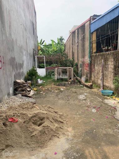 Bán đất Bùi Thị Tự Nhiên - Hải An - Hải Phòng ảnh 0