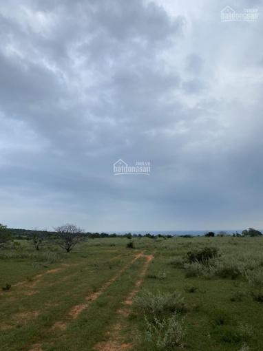 Đất vườn đường ĐT 716 (Lê Hồng Phong) diện tích 10900m2, giá 1 tỷ 586tr, SHR ảnh 0