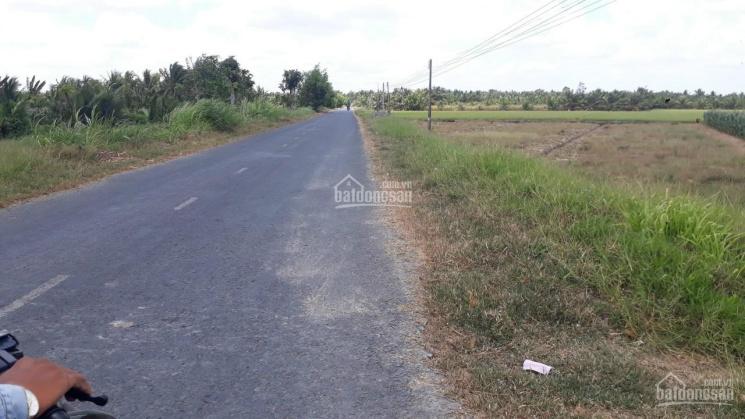 Đất mặt tiền TL 915, xã Tân Hòa, huyện Tiểu Cần ảnh 0