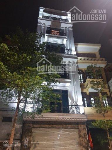 Siêu phẩm mặt phố Tôn Đức Thắng 47m2 6 tầng thang máy MT 5m, ô tô tránh, 21.6 tỷ Đống Đa ảnh 0