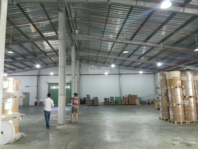 Công ty Hoa Phượng cho thuê kho, xưởng Quận Tân Phú, TP. HCM (300m2 đến 8000m2) ảnh 0