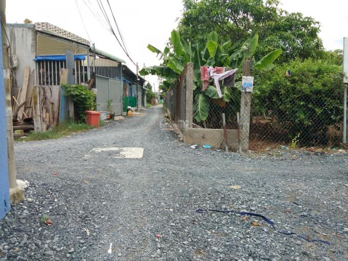 Bán đất đường Huỳnh Văn Trí, Bình Chánh thổ cư sổ riêng giá 2 tỷ 420 triệu/125m2 ảnh 0