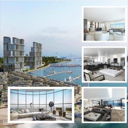 Căn studio - 1PN giá tốt nhất thị trường & quỹ căn View Vịnh trực tiếp CĐT. Hotline: 0983291567 ảnh 0