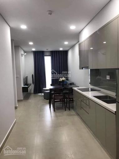 Cho thuê căn hộ 2 phòng ngủ ở River Panorama Q. 7 đầy đủ nội thất giá chỉ 9tr/tháng ảnh 0