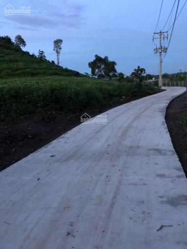 Cần bán đất 94m2 mặt tiền đường bê tông hiện hữu Hàng Gòn, Long Khánh ảnh 0