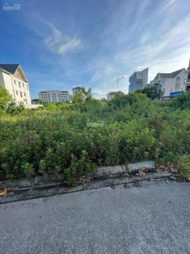 Bán đất mặt đường Ngô Gia Tự mặt tiền rộng 8,5m - Hải An ảnh 0