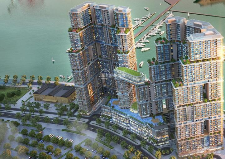 Bán căn studio tầng cao view TP 43m2 giá chỉ 2,4 tỷ HTLS 0% 30 tháng dự án Sun Marina Hạ Long ảnh 0