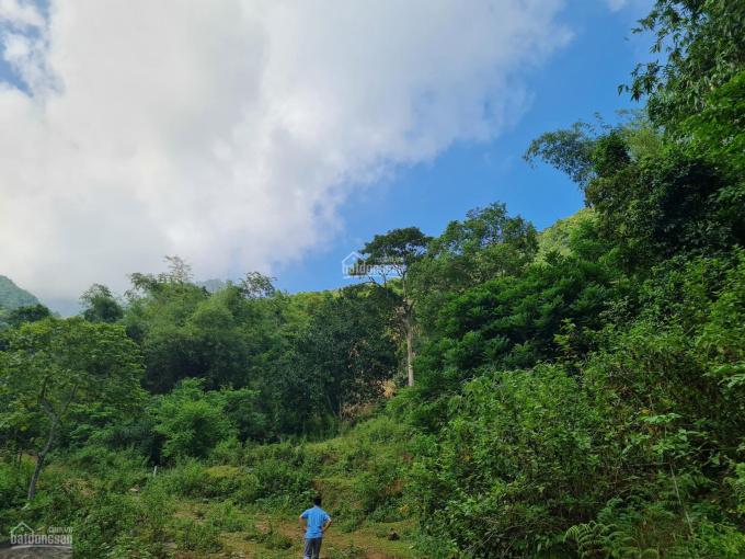 Bán lô đất 16ha vị trí view đẹp tại Kỳ Sơn ảnh 0