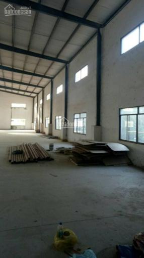 Chính chủ bán gấp xưởng 51.346m2 trong khu công nghiệp Bình Sơn ảnh 0