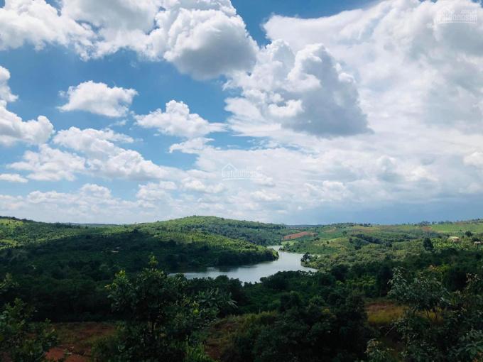 Bán lô view hồ Đắc Sin 1ha chỉ 1,4 tỷ thích hợp làm homestay đường nhựa tới đất. LH 0973848214 ảnh 0