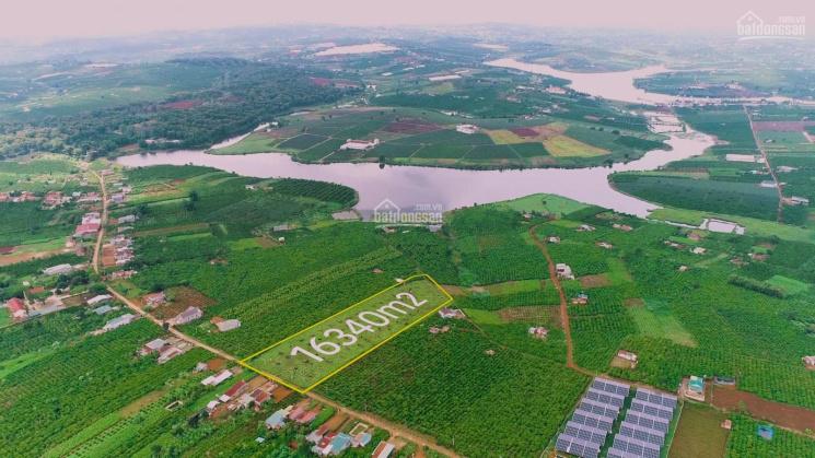 Bán gấp lô đất 2 mặt tiền đường view hồ Phúc Thọ 1,634ha. LH: 0938 872 672 ảnh 0