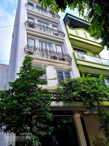 Bán nhà riêng mặt phố Mai Anh Tuấn, Đống Đa, 48m2, 5T, thang máy, ô tô, kinh doanh, giá 14 tỷ ảnh 0