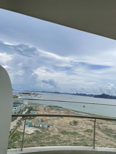 Chủ cần bán gấp căn hộ mã 05 Studio 42m2 toà B Citadines hướng vịnh đảo Rều giá tốt 1,47 tỷ ảnh 0