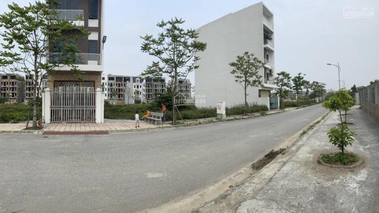 Chính chủ bán lô LK14 - Dragon City Thái Bình gần TTTM đối diện dự án sắp triển khai đẹp tiềm năng ảnh 0