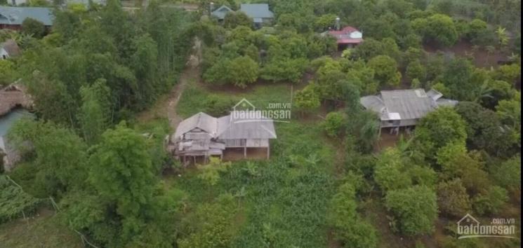Đất Mộc Châu, 2000m2, 400m thổ cư, có nhà sàn sẵn, đất vuông, giá rẻ ảnh 0