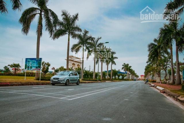 Độc quyền suất ngoại giao lô VIP biệt thự New City Phố Nối - Hưng Yên. 0937764555 ảnh 0