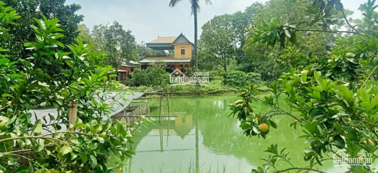 Chính chủ cần bán 3800m2 đất thuộc thôn An Thái, xã Cẩm Lĩnh, gần Suối Hai, 1tr/1m2, 0971274648 ảnh 0