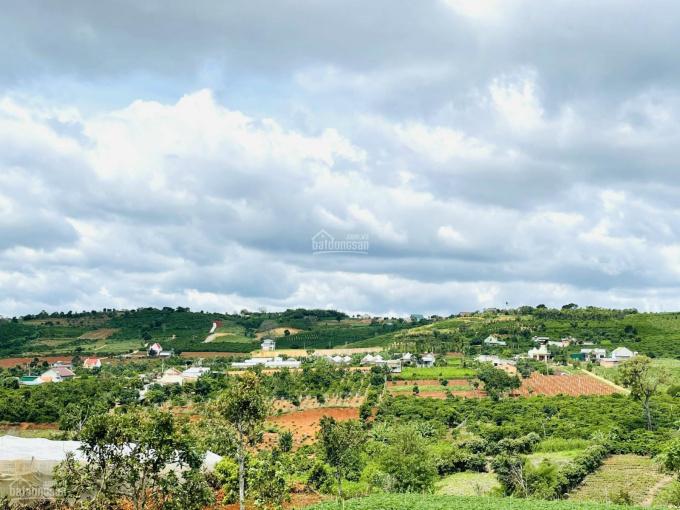 Sở hữu ngay 1035m2 đất view nghỉ dưỡng có suối thị trấn Nam Ban, Lâm Hà, Lâm Đồng chỉ với 1 tỷ 0x ảnh 0