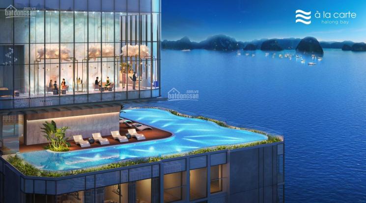 Cơ hội đầu tư BĐS: Sở hữu căn hộ ngay mặt vịnh, vị trí kim cương tại Hạ Long giá chỉ 45 triệu/m2 ảnh 0