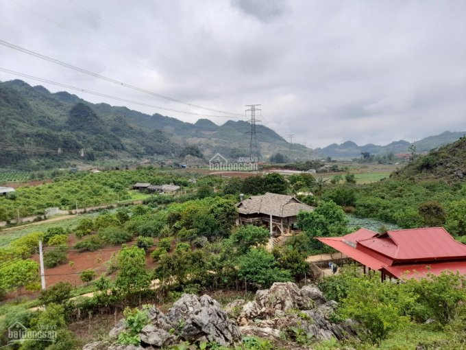 Bán đất khu đồi Hồng Công view toàn cảnh thị trấn Mộc Châu nghỉ dưỡng siêu đẹp ảnh 0
