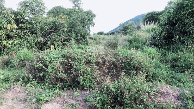 Bán đất TCHN Thôn Đắc Lộc, Vĩnh Phương, Nha Trang, Khánh Hòa ảnh 0