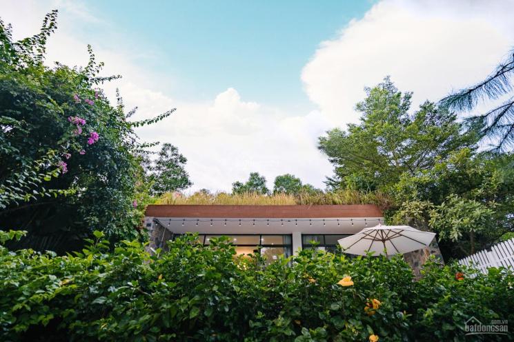 Bán căn 3 phòng ngủ - Bách Thanh - biệt thự Flamingo Đại Lải Resort, 323m2 có bể bơi ảnh 0