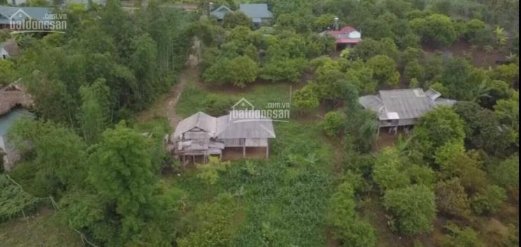 Bán mảnh đất siêu đẹp làm nghỉ dưỡng tại Mộc Châu, Sơn La ảnh 0