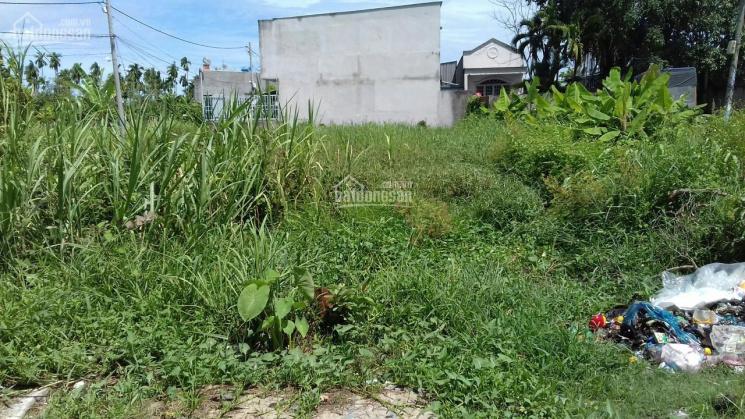 Bán đất ở đã có thổ cư 203.1m2 tại, xã Bình Mỹ, huyện Củ Chi, TP. Hồ Chí Minh giá 1.8 tỷ ảnh 0