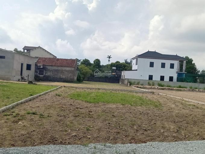 Bán lô đất đẹp 302 m2 Nghi Phong: Đường nhựa 10 mét, đất ở 100% ảnh 0