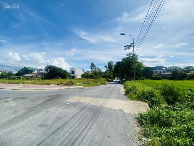 Bán nhanh lô đất mặt đường Hải Thượng Lãn Ông kéo dài xóm Ngũ Lộc - Hưng Lộc ảnh 0