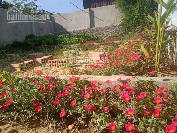 Bán nhà vườn 203m2, kiệt Duy Tân, sau lưng trường Duy Tân ảnh 0