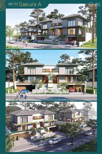 Đại lý THM Land nhận ưu tiên 1 dự án Xanh Villas C4 - C5 - C6, cam kết căn đẹp LH 0917311618 ảnh 0