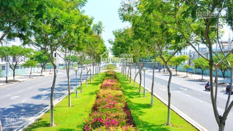 Cần bán nhanh lô đất gần trục 60m Hoàng Thị Loan và Nguyễn Sinh Sắc, cạnh biển ảnh 0