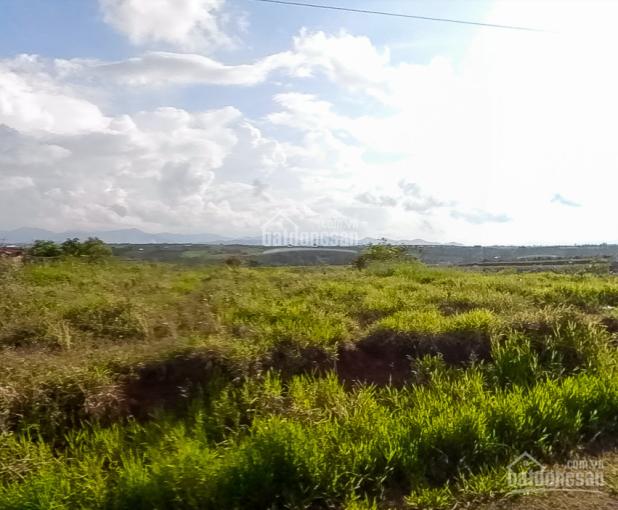 Đất mặt tiền đường Nguyễn Tri Phương 200m2 giá 610tr ảnh 0