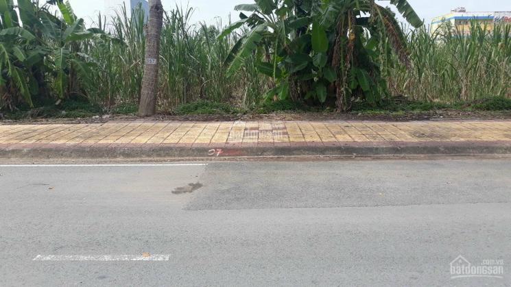Đất nền mặt tiền đường Võ Văn Kiệt, TP Vị Thanh, Hậu Giang ảnh 0
