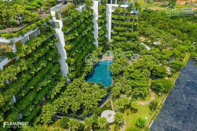 Chính chủ bán đất biệt thự Flamingo Đại Lải - view hồ siêu đẹp, ô góc 3 mặt thoáng. Lh: 0979009745 ảnh 0
